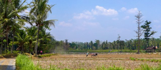 What to Do in Borobudur off the Beaten Path